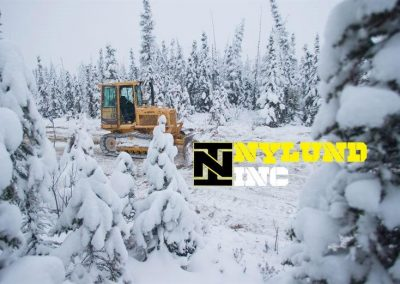 Nylund inc ad from my business