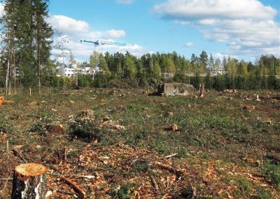 Nylund Inc. Land and Brush Clearing Services in Vancouver wa
