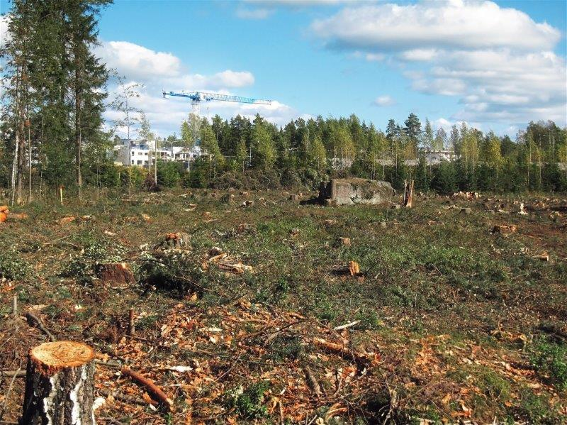 Importance of Land Clearing